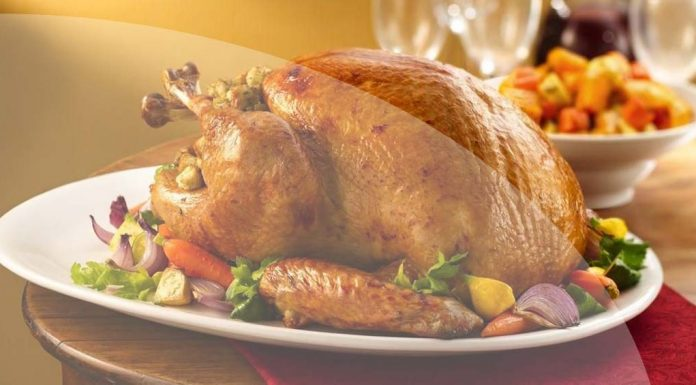 Exquisite turkey recipes for this holiday season