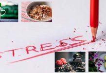 Stress fighting foods